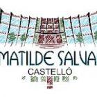 LOGO IES MATILDE SALVADOR